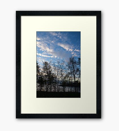 Sky Glory Through The Screen Of Trees Framed Print