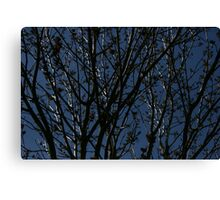 BURY ME BENEATH THE BROKEN BRANCH Canvas Print
