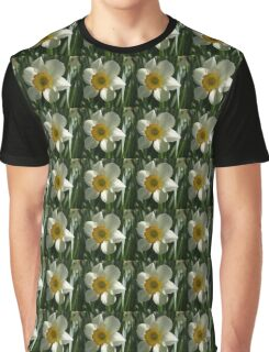 Poet's Daffodil Square Graphic T-Shirt