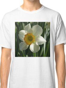 Poet's Daffodil Square Classic T-Shirt