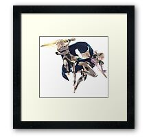 Fire Emblem Fates - Male & Female Corrin / Kamui Framed Print