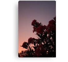 DEAD AT DAYBREAK Canvas Print