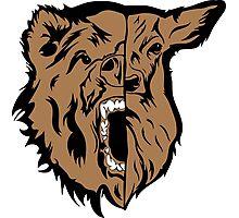 Beast (Bear and Deer) Photographic Print