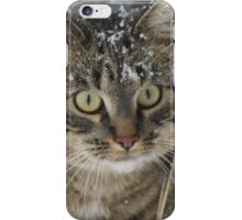 Snowflakes On My Whiskers - Puma iPhone Case/Skin