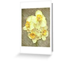 NARCISSUS BEAUTIFUL EYES (Daffodils) Greeting Card