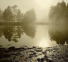 Mist and sparkle 2 by Duncan Cunningham