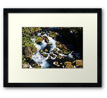 McKenzie River I Framed Print
