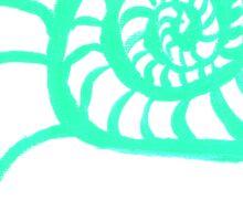 Nautilus Cross-Section Sticker