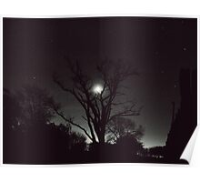 Night, moon, and tree Poster