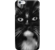 Jasper #7 iPhone Case/Skin