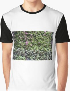 Green wall with pink flowers. Graphic T-Shirt