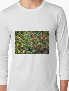Bush with colorful flowers in the garden. Long Sleeve T-Shirt