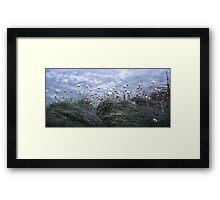 Flowers on the Edge  Framed Print