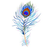 Peacock feather watercolor Photographic Print