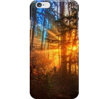 Road to the Paradise iPhone Case/Skin