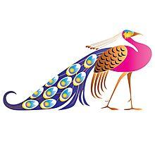 Beautiful pink peacock Photographic Print