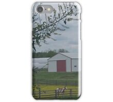 Horse on a farm iPhone Case/Skin