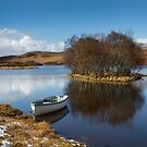 Lochside boat by Dave Hare