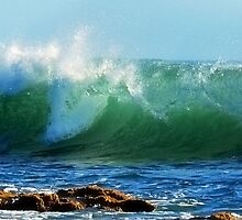 The Wave by Richard Owen