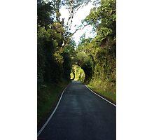 Road to Mt Taranaki Photographic Print