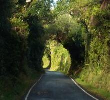 Road to Mt Taranaki Sticker