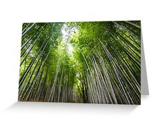 Kyoto Bamboo Forest Greeting Card
