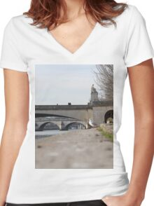 A Seagull On The Edge Of A River Bank On A Sunny Day Women's Fitted V-Neck T-Shirt