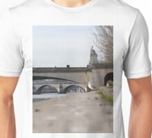 A Seagull On The Edge Of A River Bank On A Sunny Day Unisex T-Shirt