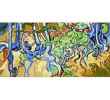 Vincent van Gogh Tree Roots Photographic Print