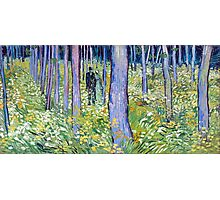 Vincent van Gogh Undergrowth with Two Figures Photographic Print