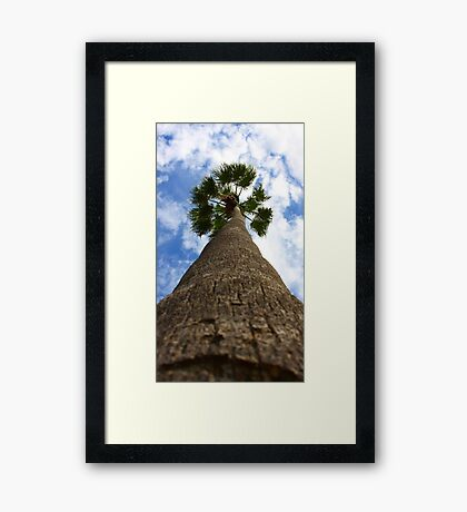 Hello Mr Palm Tree Framed Print