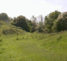 Green Valley Path Photo 1 Sticker