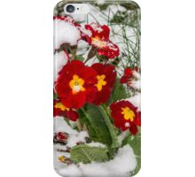 Hope and warmth in the snow iPhone Case/Skin