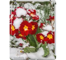 Hope and warmth in the snow iPad Case/Skin