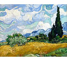 Vincent van Gogh Wheatfield with Cypresses Photographic Print