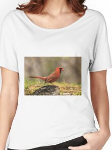 Male Northern Cardinal Women's Relaxed Fit T-Shirt