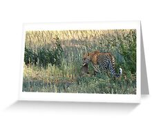 Leopard Kill Greeting Card