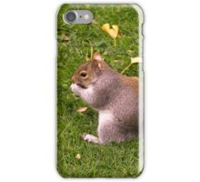 Nutty lunchtime iPhone Case/Skin