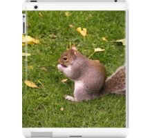 Nutty lunchtime iPad Case/Skin