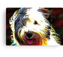 Sheepdog Canvas Print