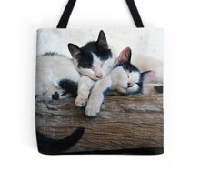 Cute kittens sleeping Tote Bag