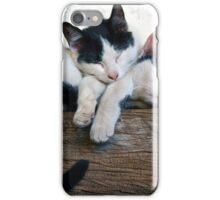 Cute kittens sleeping iPhone Case/Skin