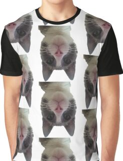 Crazy Gracie Upside Down Kitty Graphic T-Shirt