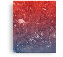 red marble white Canvas Print