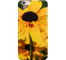 CO172 iPhone Case/Skin