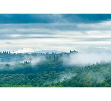 In Forest and Cloud Photographic Print