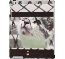 LITTLE CAT PLAYING PHOTOGRAPHY EMEICEA iPad Case/Skin