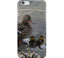 Momma Mallard and Ducklings iPhone Case/Skin
