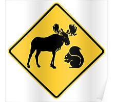 Moose & Squirrel XING Poster