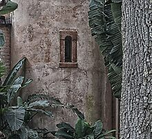Bok Tower Window by Imagery